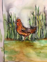 Chicken on the move 5x7 $50